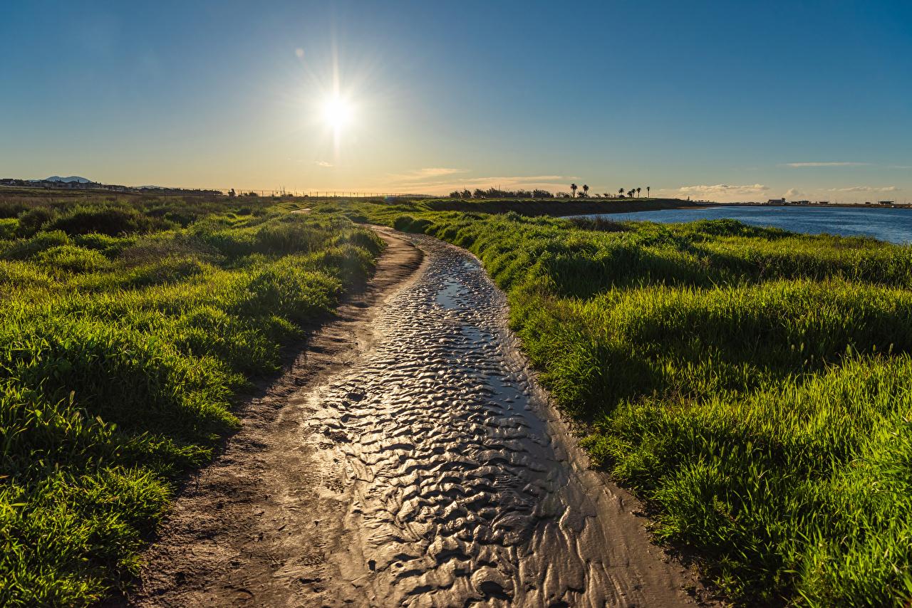 Wallpaper California USA Huntington Beach Sun Nature sunrise and sunset Coast Grass Sunrises and sunsets