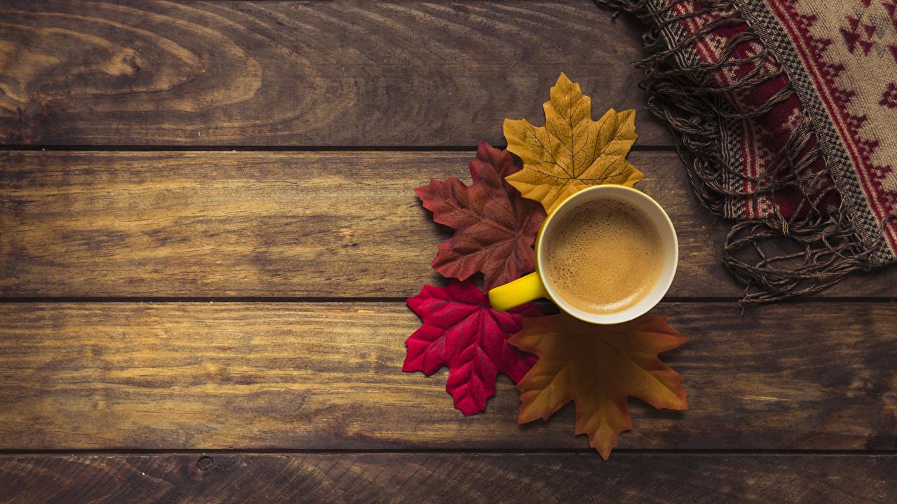Fotos von Blattwerk Kaffee Herbst Tasse Lebensmittel Bretter Blatt