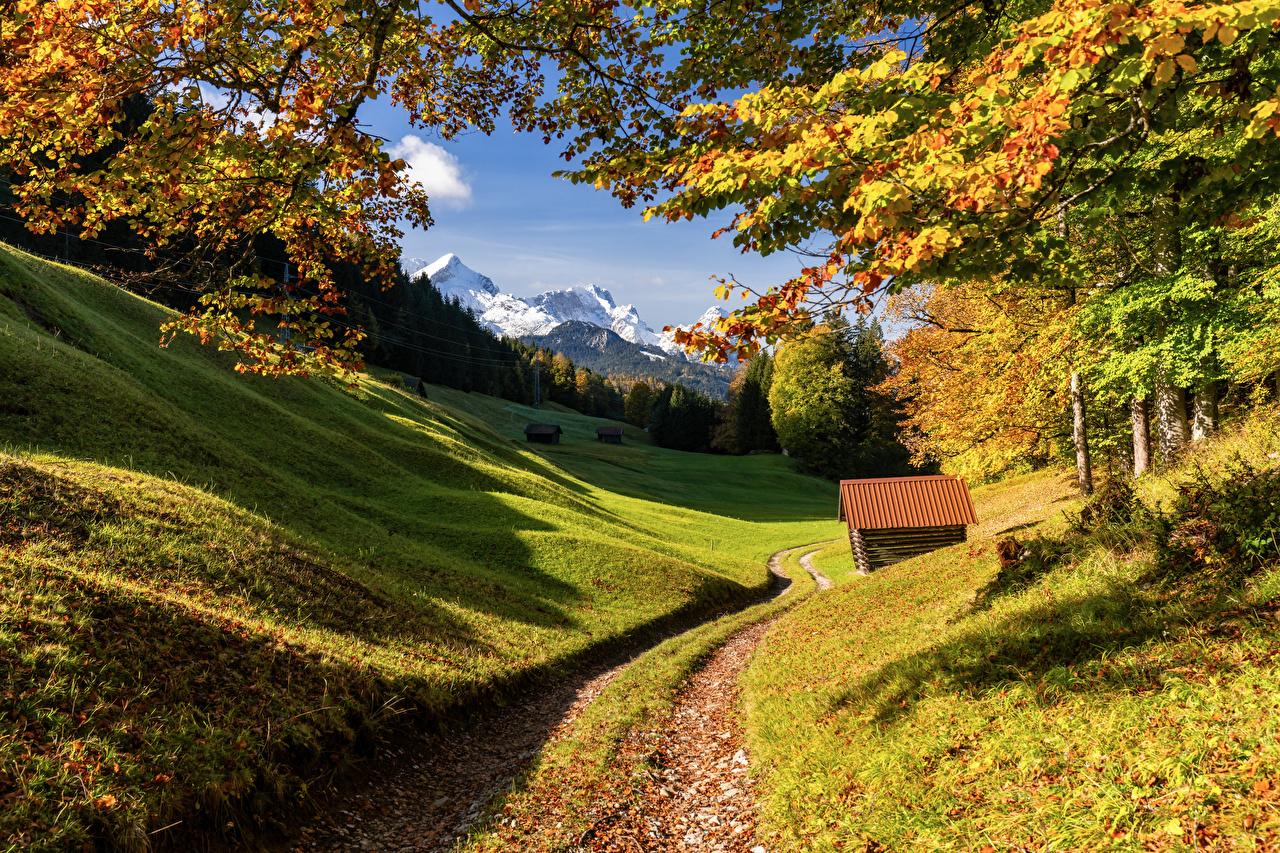 Photos Alps Germany Upper Bavaria Nature Autumn Mountains Trees mountain