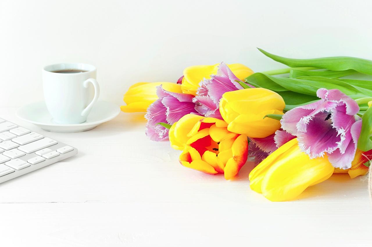 Bakgrunnsbilder til skrivebordet flerfargete Buketter Kaffe Tulipaner blomst Mat Tekopp Fargerike bukett tulipanslekta Blomster