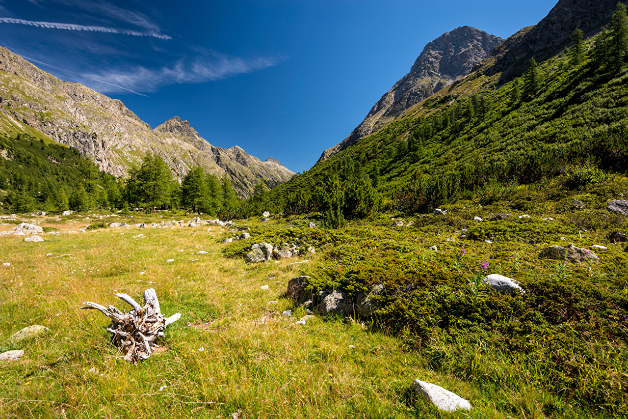 Image Alps Switzerland Val Bever Nature Mountains Grass Stones mountain stone