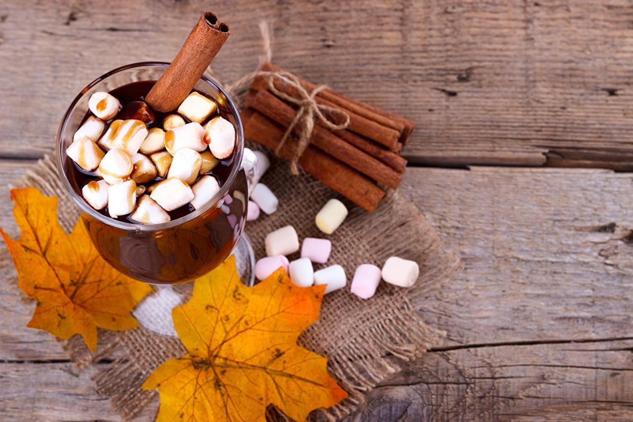 Picture cocoa Marshmallow Cinnamon Food Stemware Hot chocolate drink