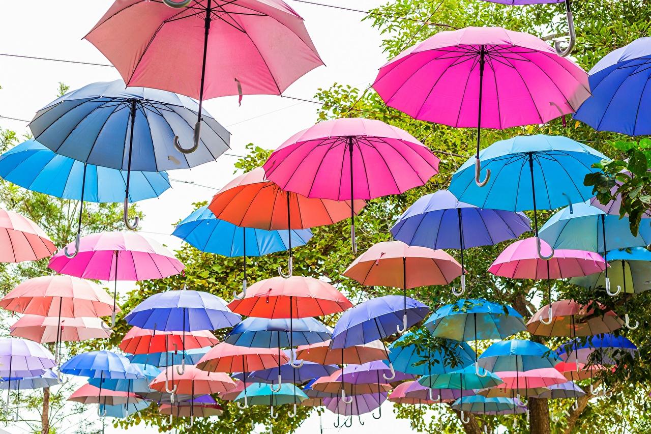 Wallpaper parasol Many Umbrella