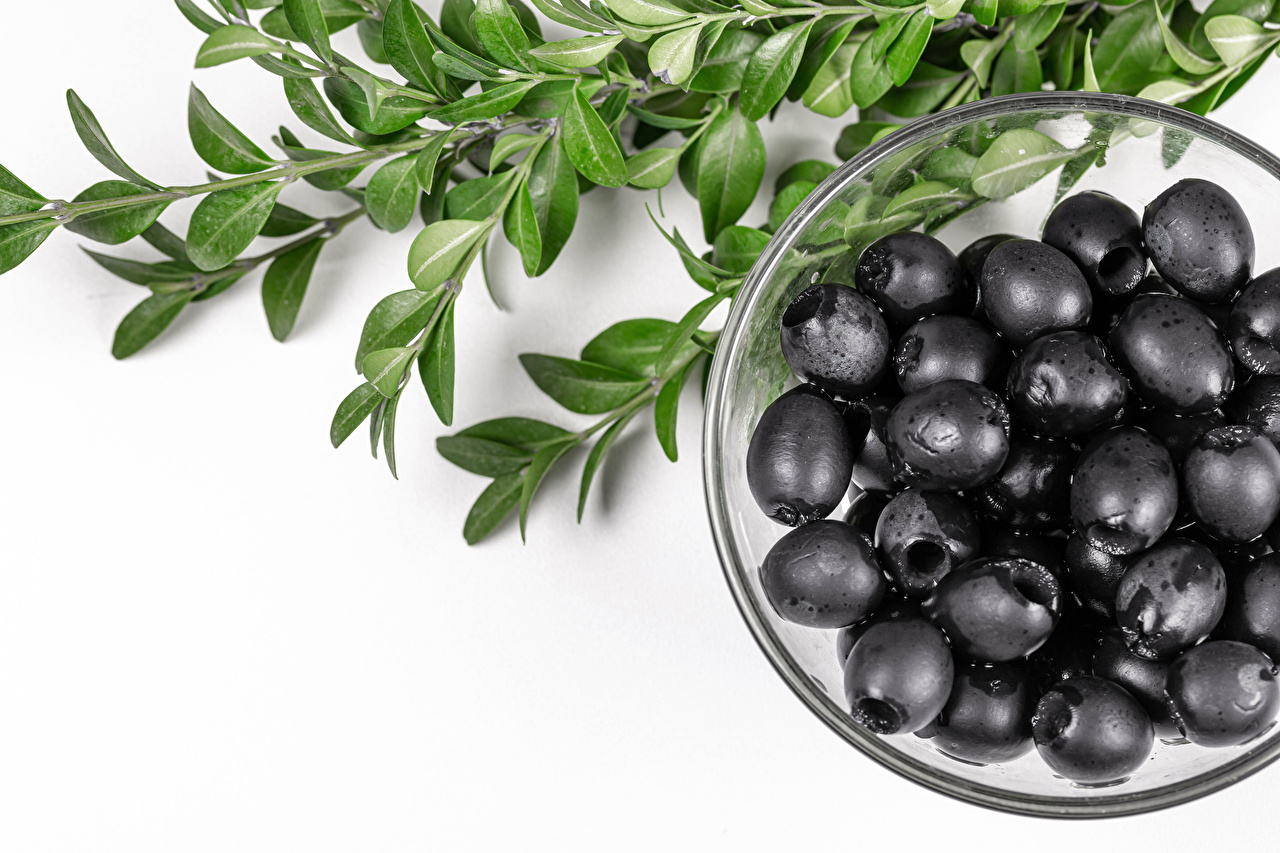 Photos Olive Black Bowl Food Branches White background