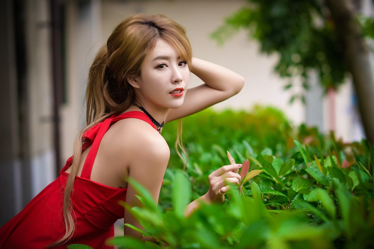 Tapeta Szatenka rozmazane tło młode kobiety azjatycka krzewy Spojrzenie brązowowłosa dziewczyna dziewczyna z brązowymi włosami Bokeh dziewczyna Dziewczyny młoda kobieta Azjaci wzrok Krzaki
