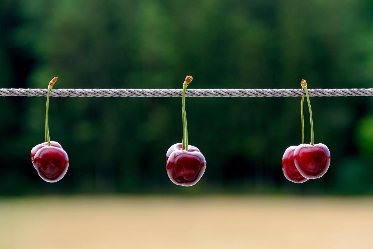 Wallpaper blurred background Cherry Berry Bokeh