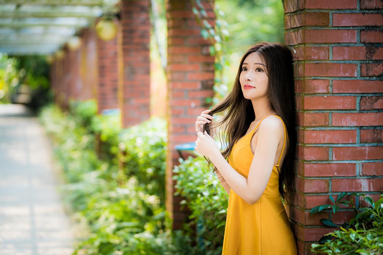 Fotos von Braunhaarige unscharfer Hintergrund junge frau Asiatische Hand Kleid Braune Haare Bokeh Mädchens junge Frauen Asiaten asiatisches