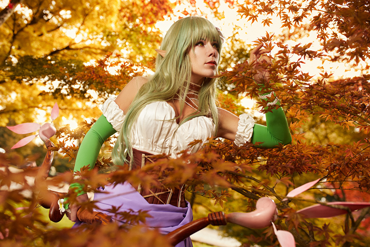 Photos Mikhail Davydov photographer warrior Cosplay Bow weapon Rena Fantasy young woman Branches Glance Warriors cosplayers costume play Girls female Staring