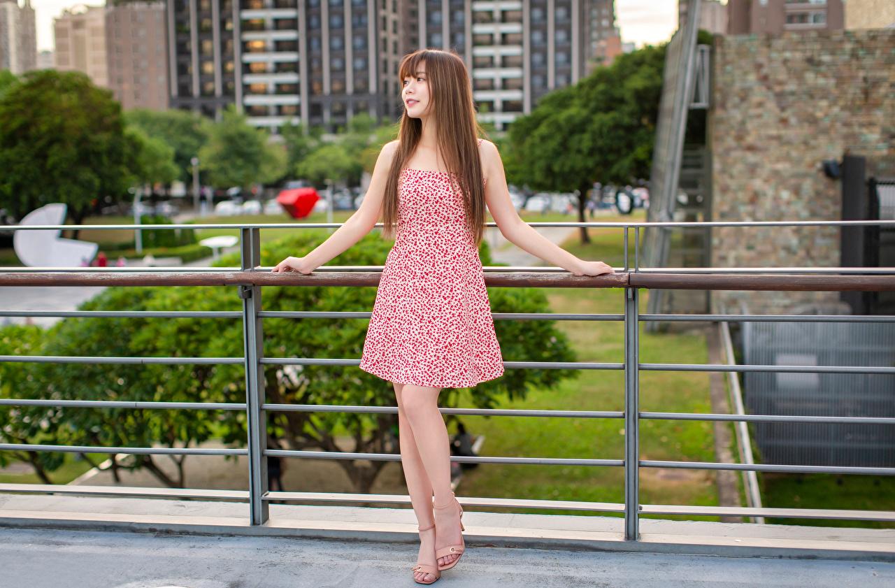 Foto Braunhaarige Pose junge Frauen Asiaten Kleid Braune Haare posiert Mädchens junge frau Asiatische asiatisches