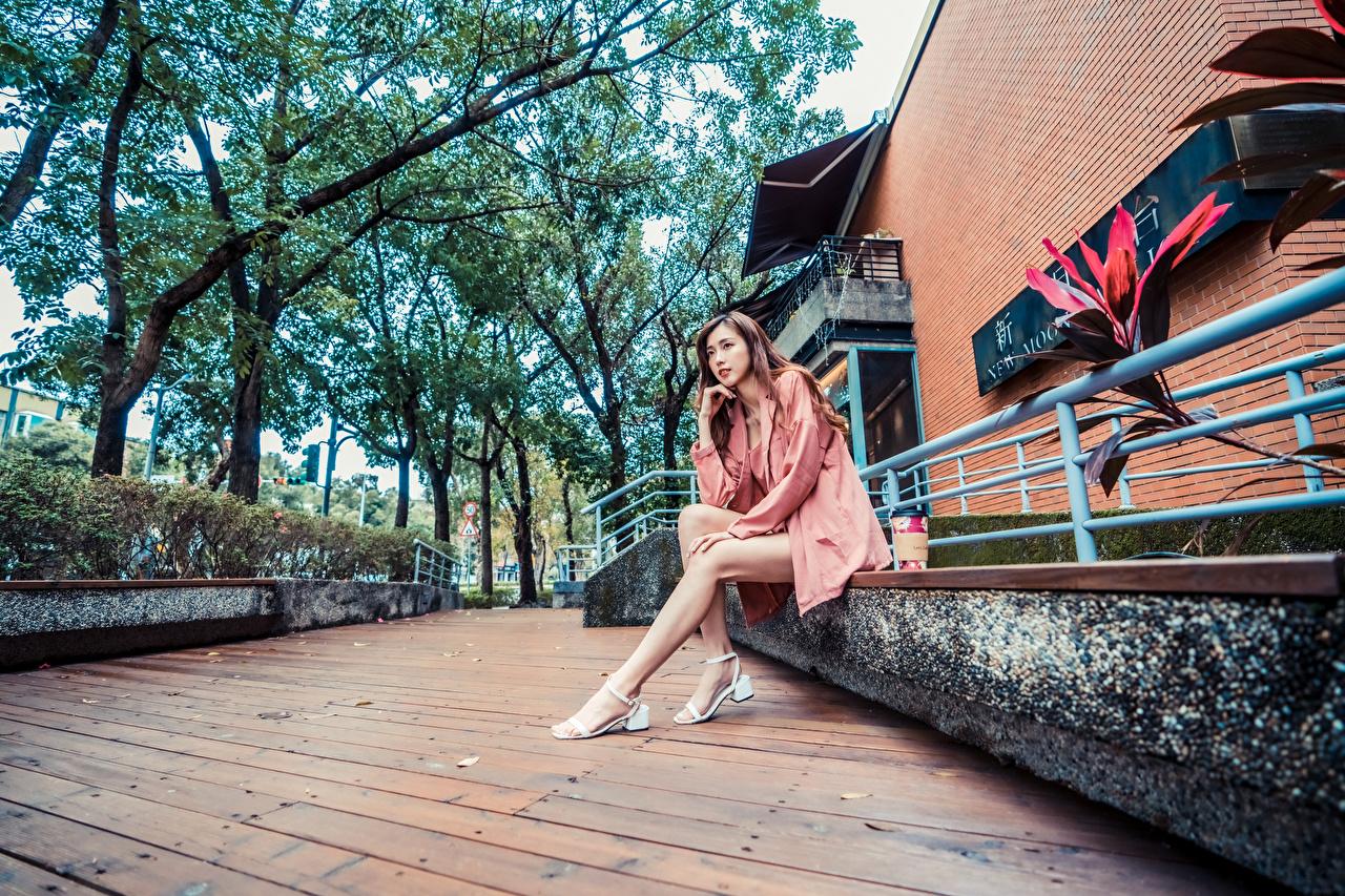 Bilder von junge Frauen Bein Asiaten Sitzend Blick Mädchens junge frau Asiatische asiatisches sitzt sitzen Starren