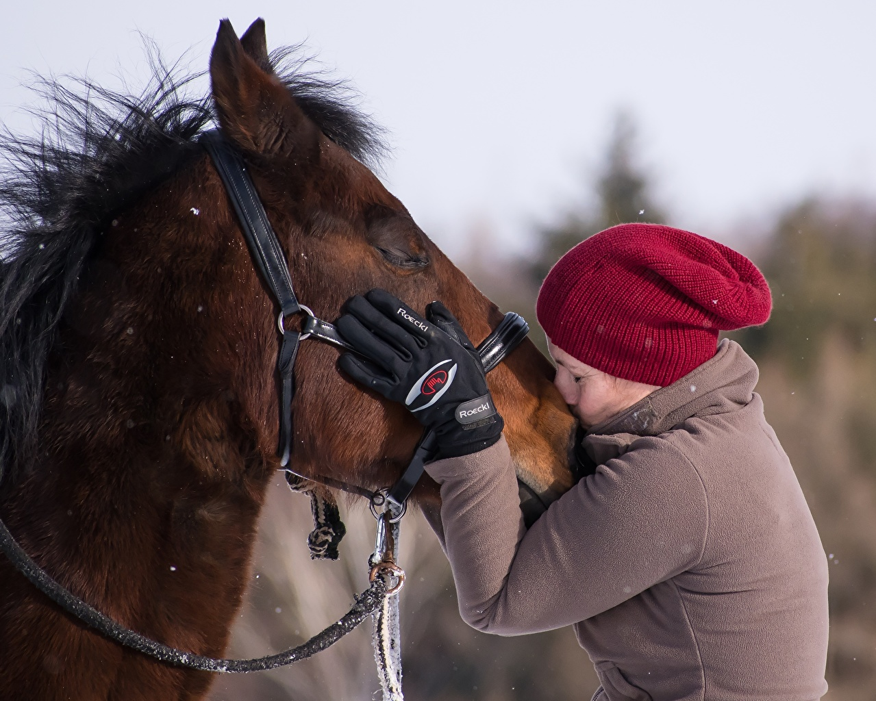 Desktop Wallpapers Horses Glove kisses 2 Girls Winter hat Hands horse Kiss kissing Two female young woman