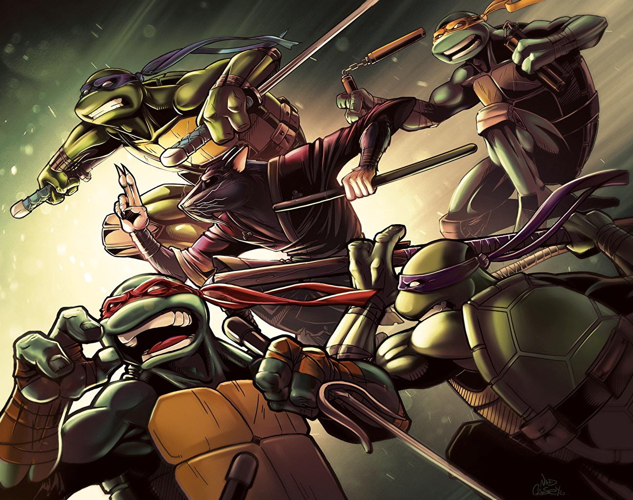 壁紙 ティーンエイジ ミュータント ニンジャ タートルズ Michelangelo Leonardo Donatello Raphael Teenage Mutant Ninja 漫画 ダウンロード 写真