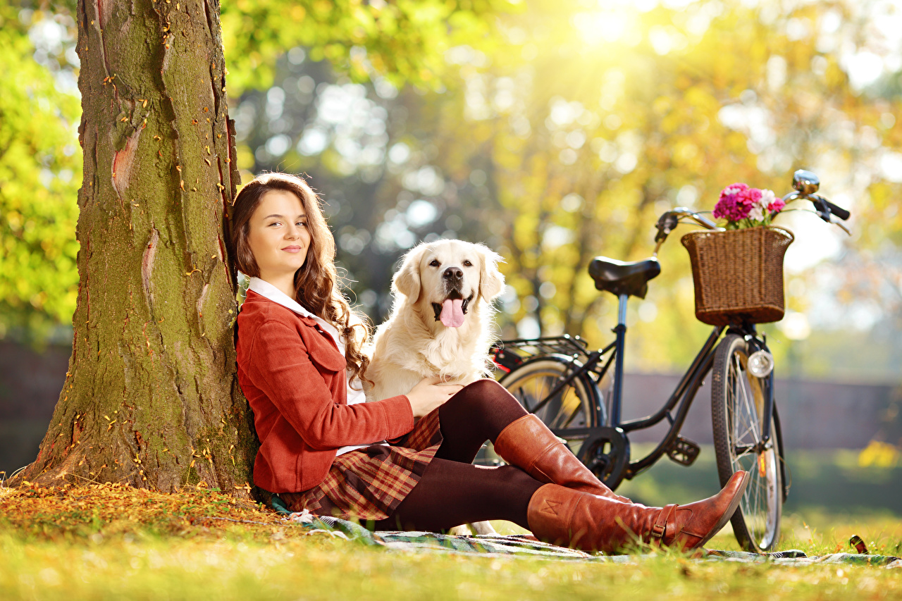 Image Golden Retriever Dogs Brown haired Wearing boots Bokeh bicycles female Legs Grass Sitting dog blurred background bike Bicycle Girls young woman sit