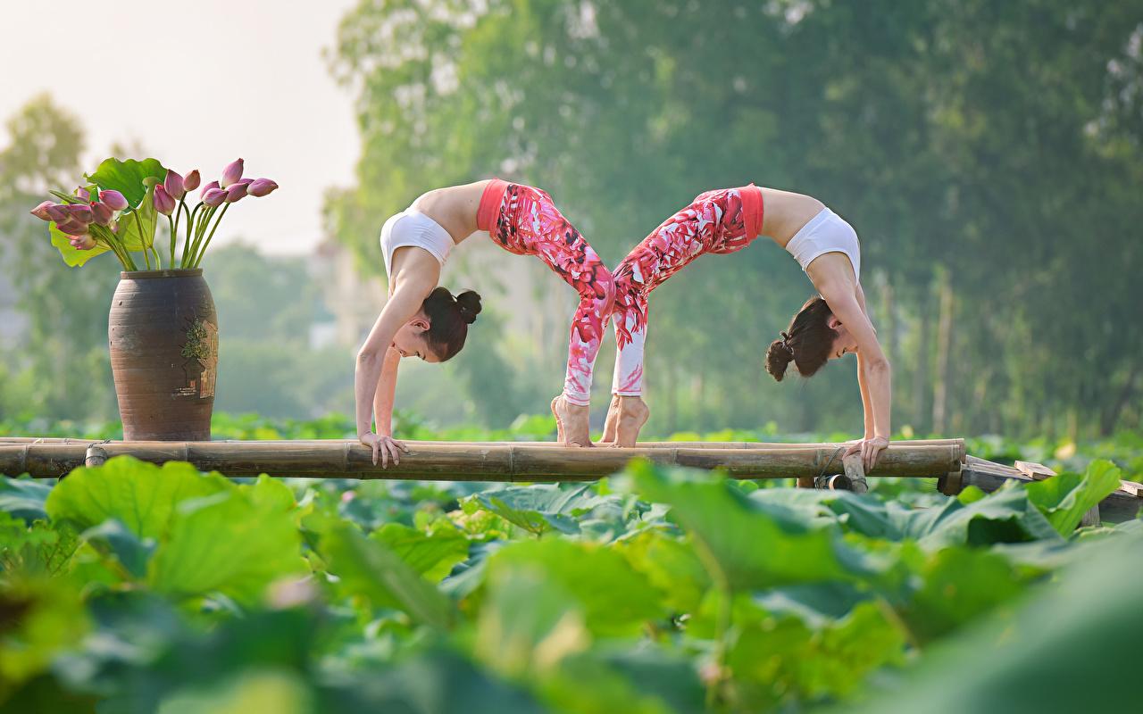 Fotos Fitness Zwei Mädchens Gymnastik Asiatische 2 junge frau junge Frauen Asiaten asiatisches