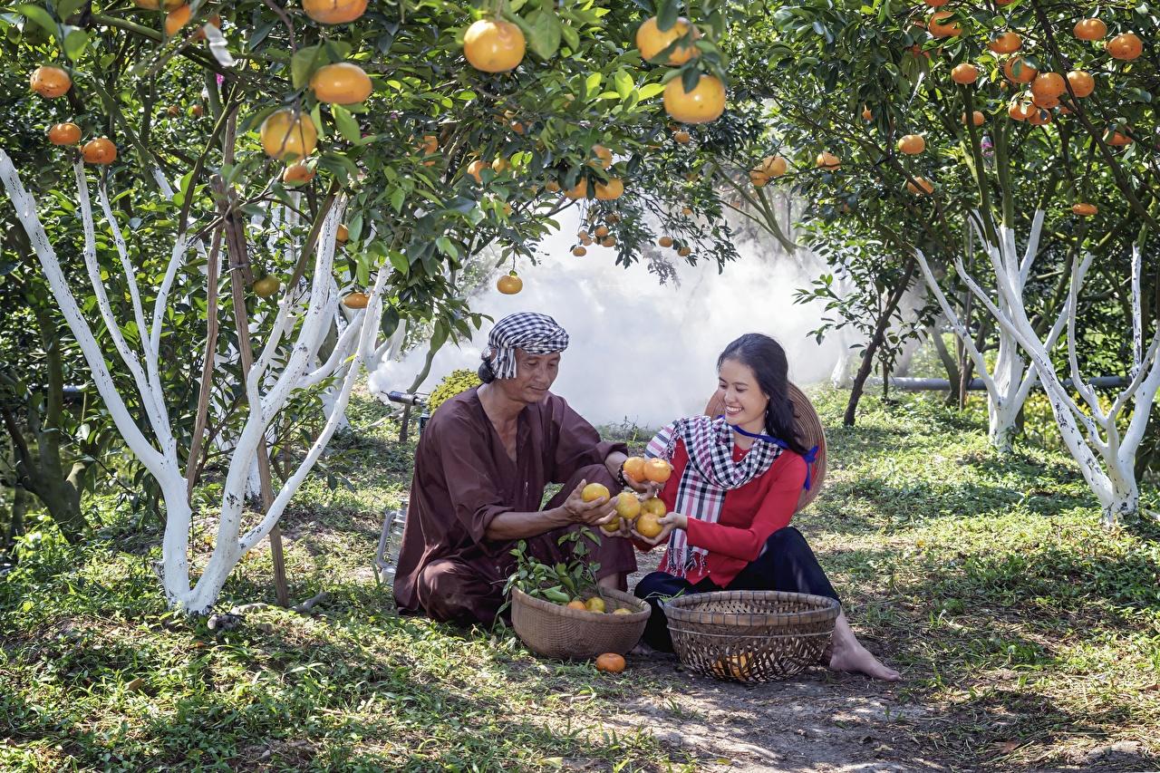 Jardims Homem Vietnamese Dois Sentados Cesta de vime Sorrir Grama jovem mulher, mulheres jovens, moça, sentada, 2 Meninas