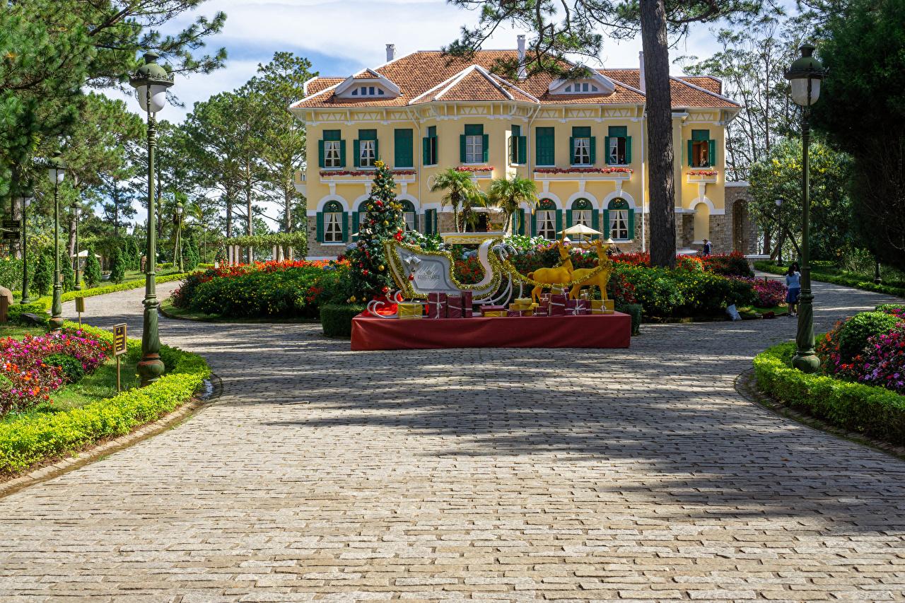 Fotos Hirsche Palast Vietnam Neujahr Schlitten Bao Dai King Palace in Da Lat Weihnachtsbaum Straßenlaterne Städte Design Tannenbaum Christbaum