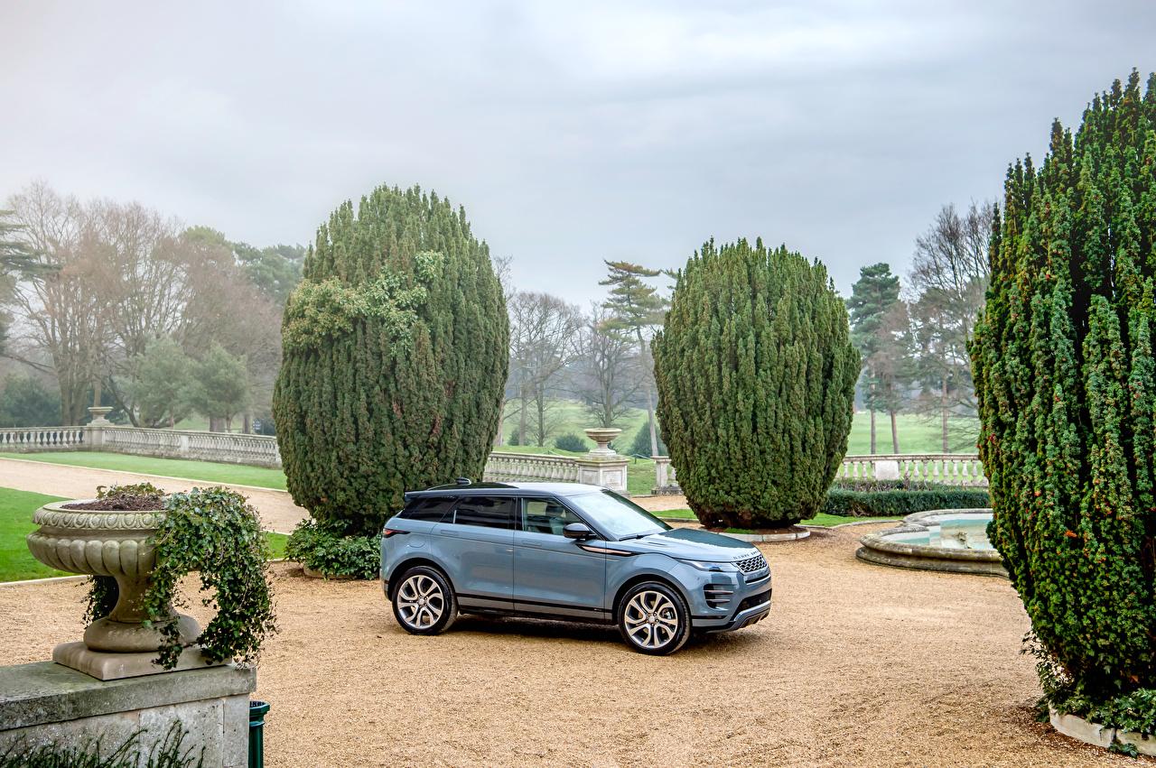 Fotos Land Rover Crossover 2019 Evoque R-Dynamic First Edition Worldwide Grau Autos Metallisch Softroader graue graues auto automobil