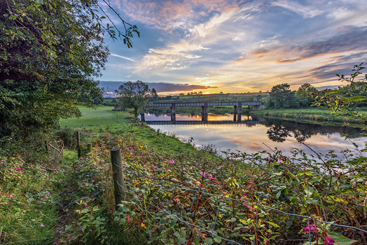 Desktop Hintergrundbilder Vereinigtes Königreich Tyrone, Northern Ireland Natur Brücken Gras Flusse Bäume Brücke Fluss