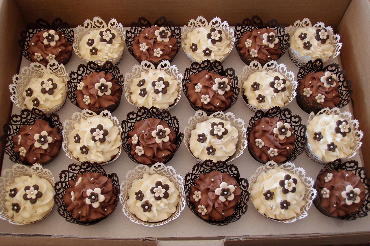 Bilder von Schokolade Lebensmittel Viel Törtchen Design