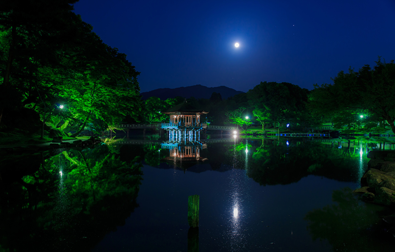 Photos Japan Nara Park Nature Bridges Moon Pond Parks Pagodas Night Trees night time