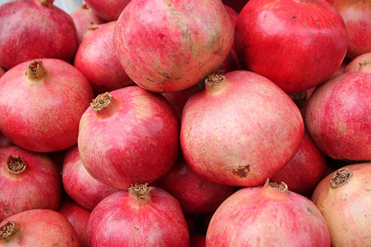 Images Pomegranate Food Closeup