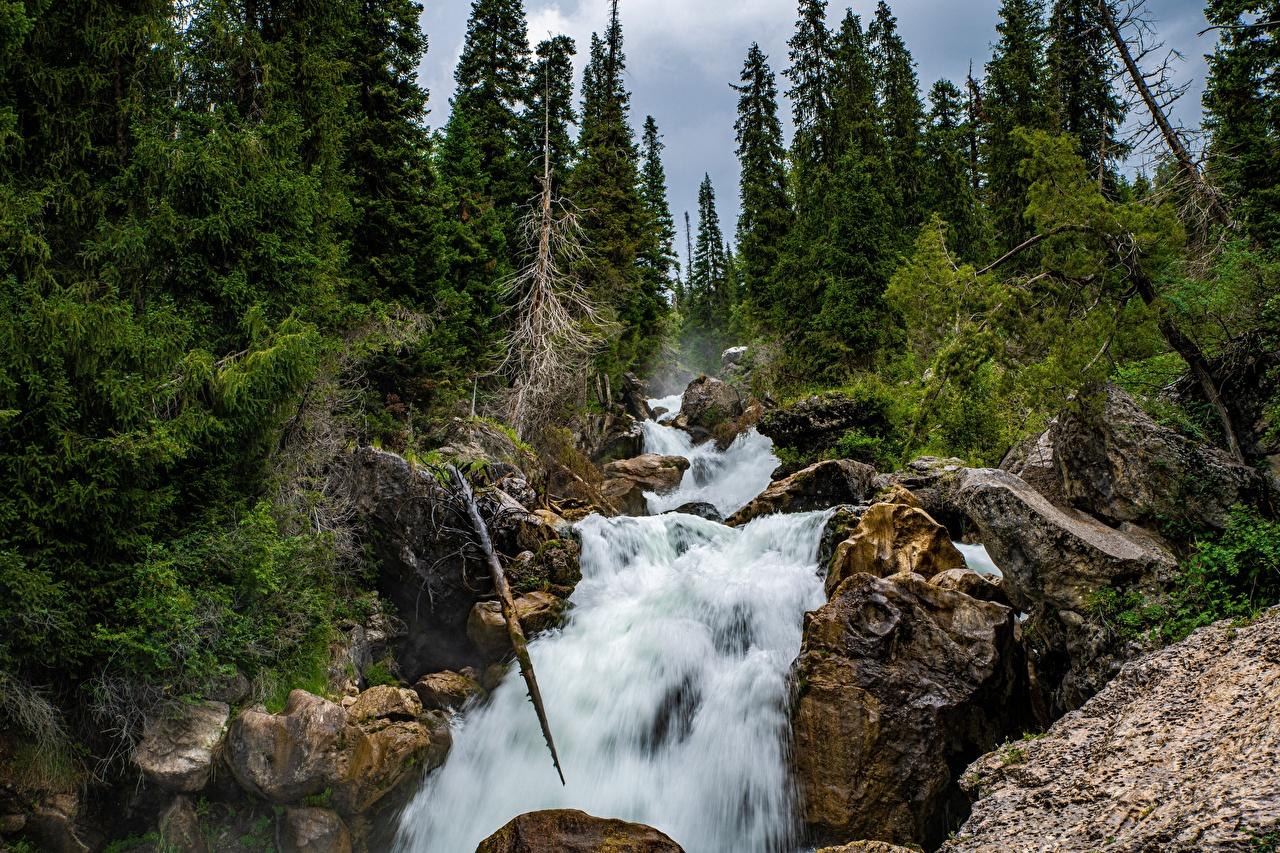 Bilder von Kara-Kamysh, Kyrgyzstan Natur Felsen Wasserfall Fluss Bäume Flusse
