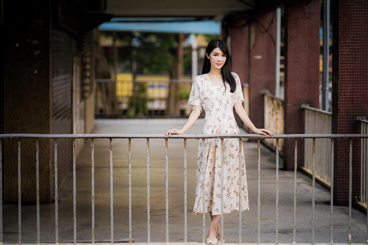 Bilder von Brünette unscharfer Hintergrund junge Frauen Zaun asiatisches Hand Kleid Bokeh Mädchens junge frau Asiaten Asiatische