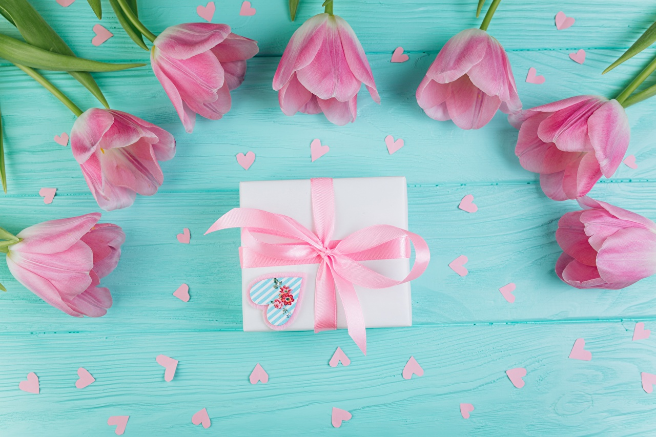 Images Tulips Pink color flower present Bowknot Wood planks tulip Gifts Flowers bow knot boards