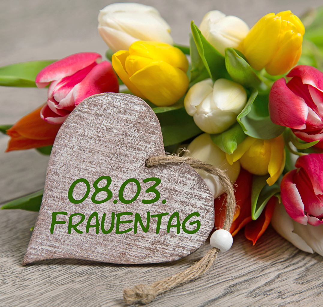 Images March 8 Heart German Tulips Flowers International Women's Day