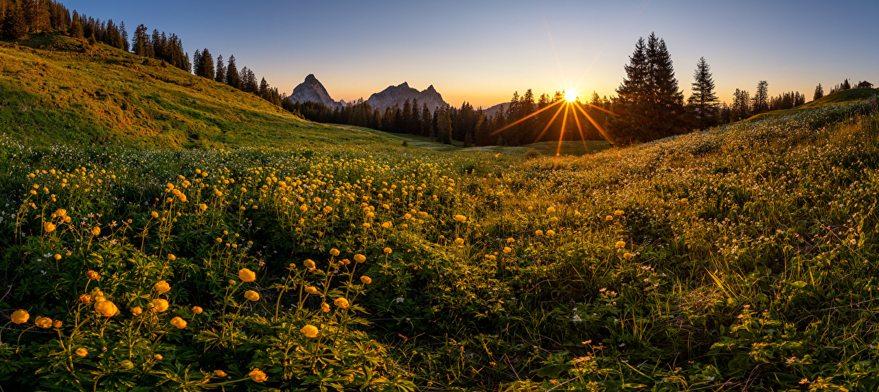 Picture Nature Panorama Switzerland trollius, Schwyz Alps mountain Grasslands Sunrises and sunsets Evening panoramic Mountains Meadow sunrise and sunset