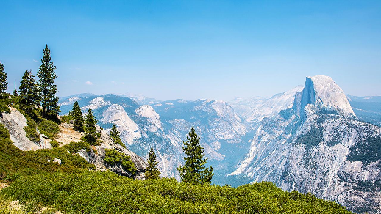 Image Yosemite USA Nature Spruce Mountains Parks landscape photography mountain park Scenery