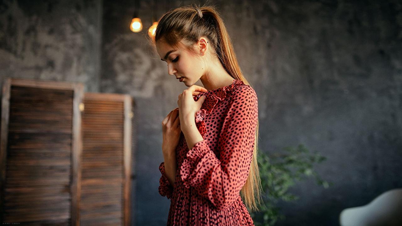 Fotos Braunhaarige Aleksei Iurev junge frau Hand Kleid Braune Haare Mädchens junge Frauen