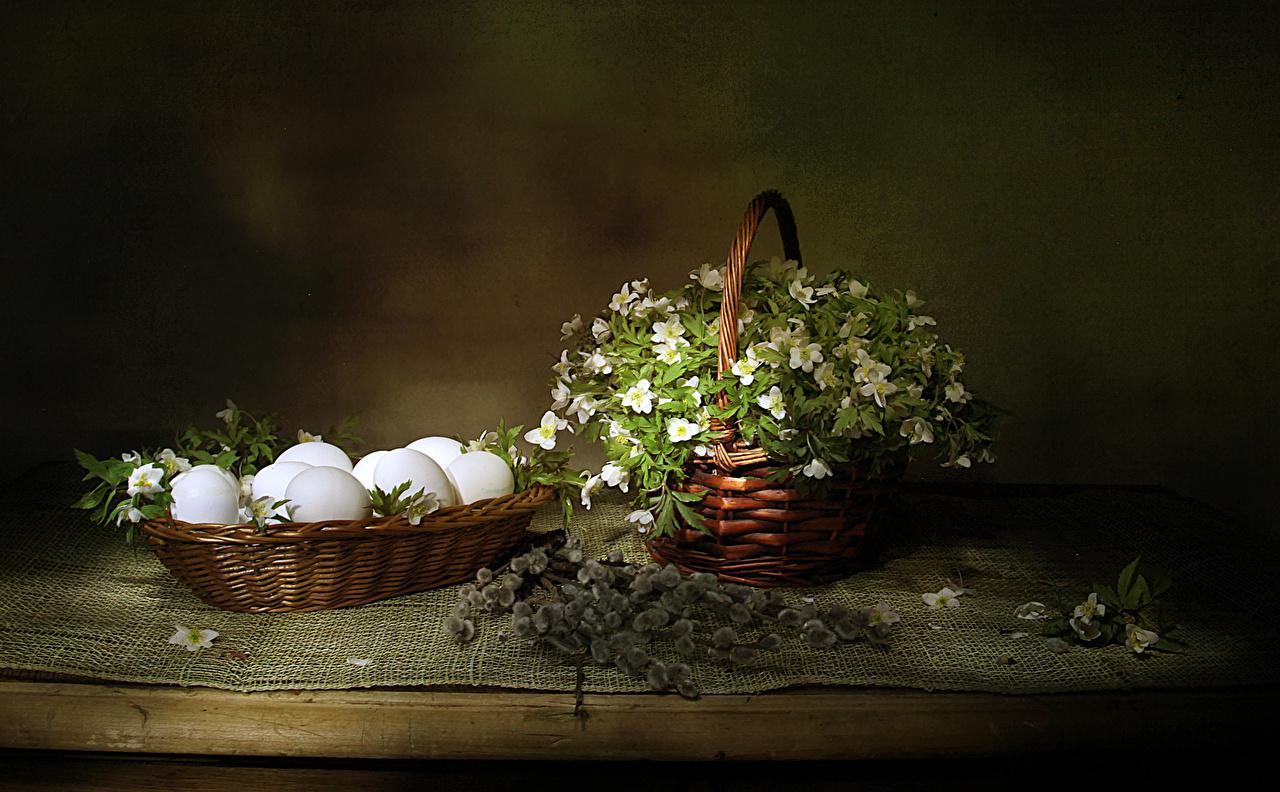 Desktop Hintergrundbilder Ostern eier Blumen Weidenkorb Schneerosen Ast das Essen Ei Blüte Nieswurz Lenzrosen Christrosen Lebensmittel