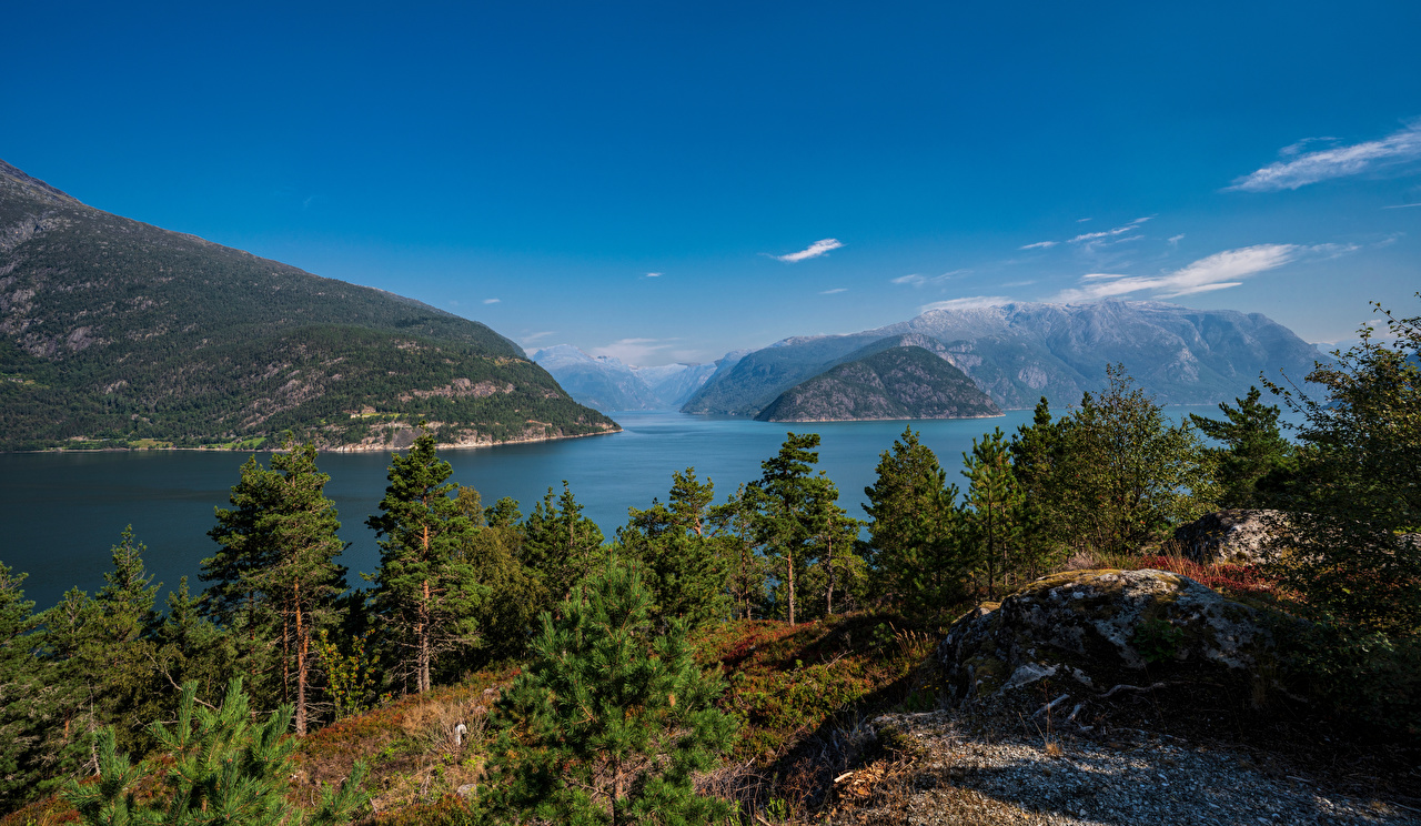 Images Norway Hardangerfjorden Nature mountain Trees Mountains
