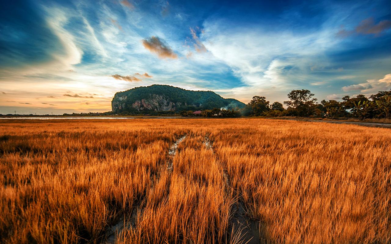 Sfondi del desktop Natura Autunno Cielo Paesaggio Campo agricolo