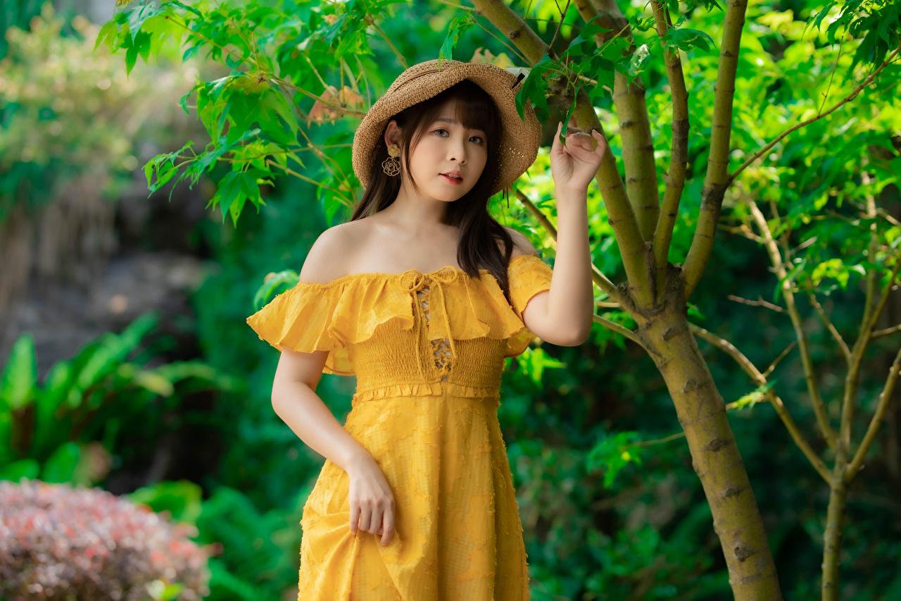 Bilder Der Hut junge frau Asiatische Hand Kleid Mädchens junge Frauen Asiaten asiatisches