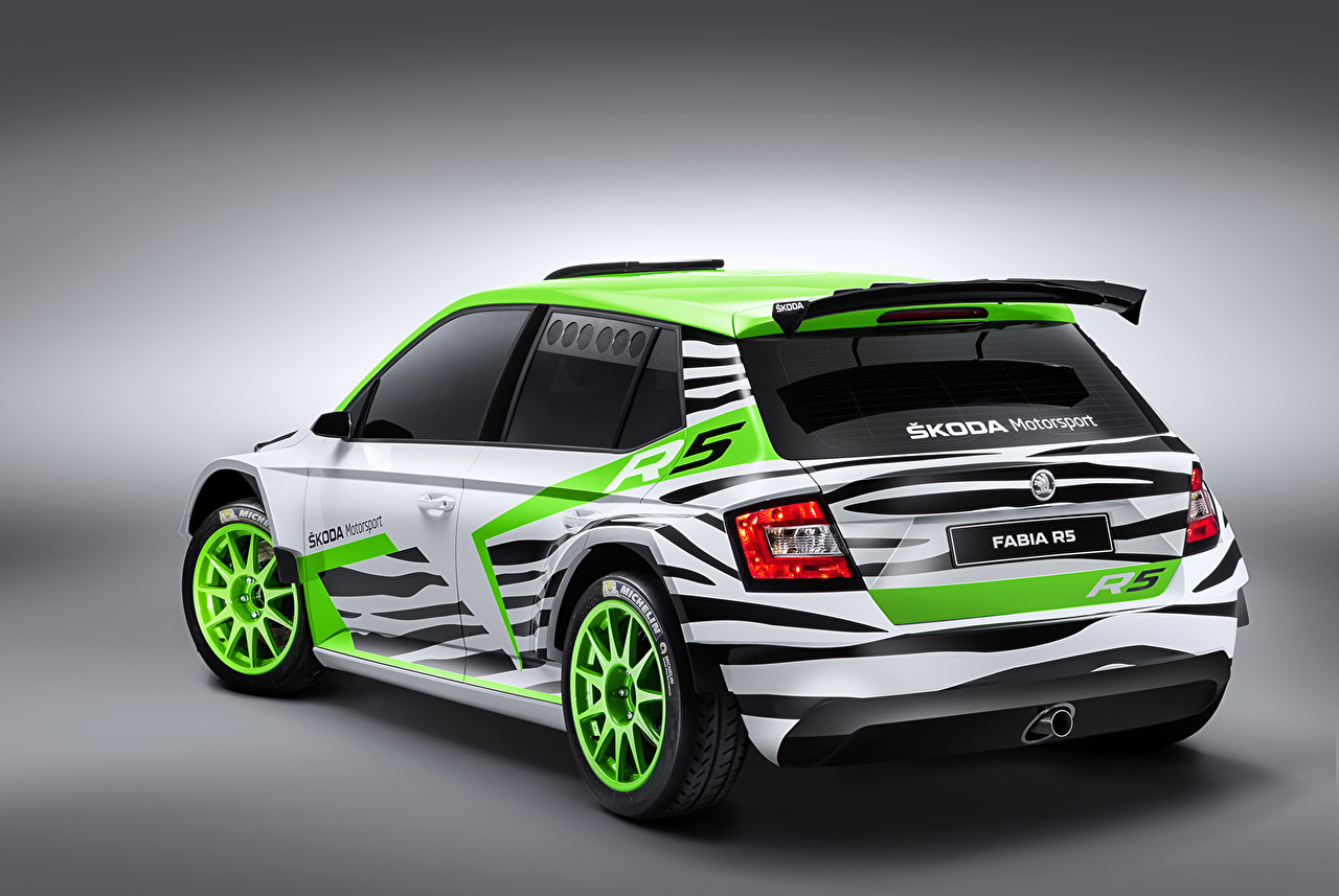 Images Skoda Tuning 2014 Fabia R5 Back View Automobile