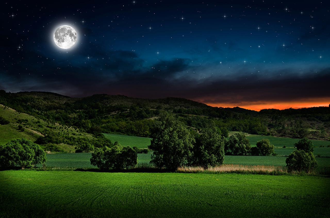 Fotos Natur Mond Himmel Grünland Landschaftsfotografie Nacht Bäume