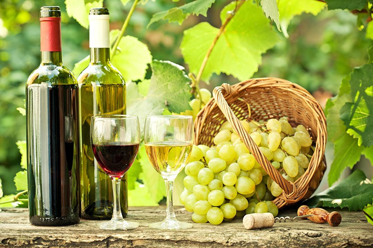 Bilder von Wein Weidenkorb Weintraube Flasche Weinglas Lebensmittel