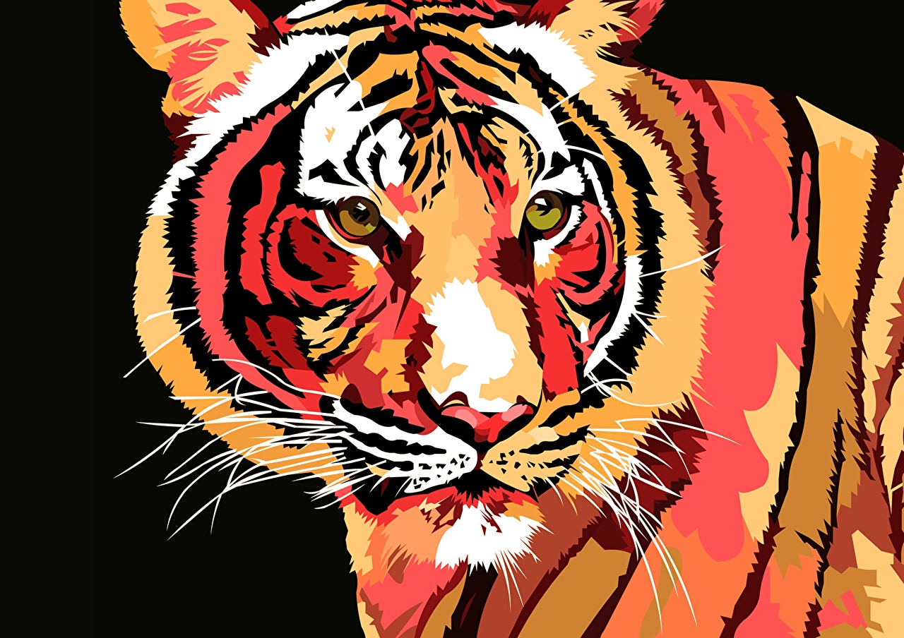 Pictures tiger Big cats Snout Staring Animals Painting Art Vector Graphics Tigers Glance animal