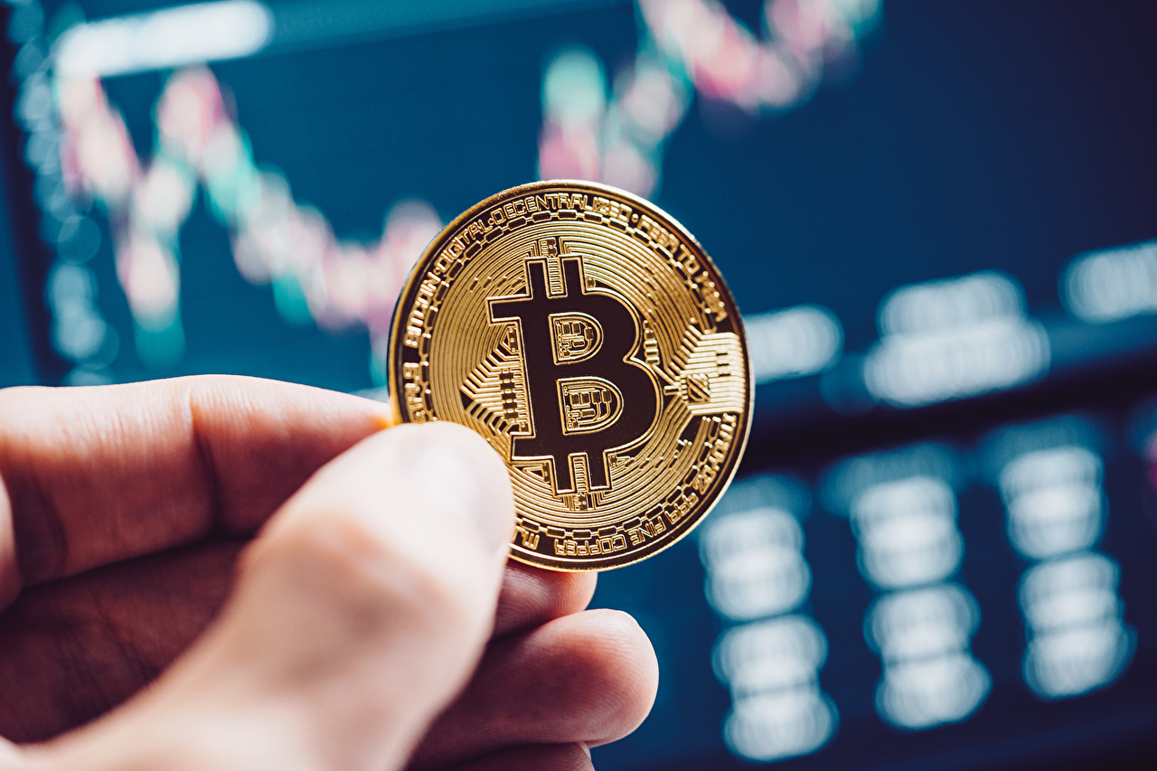 Picture Coins Bitcoin blurred background Money Fingers Closeup Bokeh