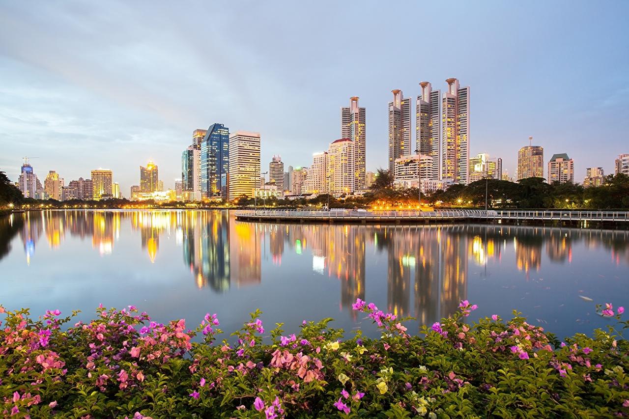 ,泰国,公园,摩天大樓,曼谷,堤岸,城市,