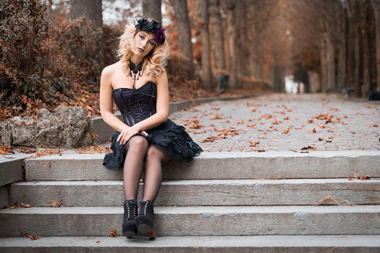 Foto Gothic Fantasy Blatt Blond Mädchen Bokeh Kranz Herbst junge frau Bein Sitzend Blick Kleid gotische Blondine Blattwerk unscharfer Hintergrund Mädchens junge Frauen sitzt sitzen Starren