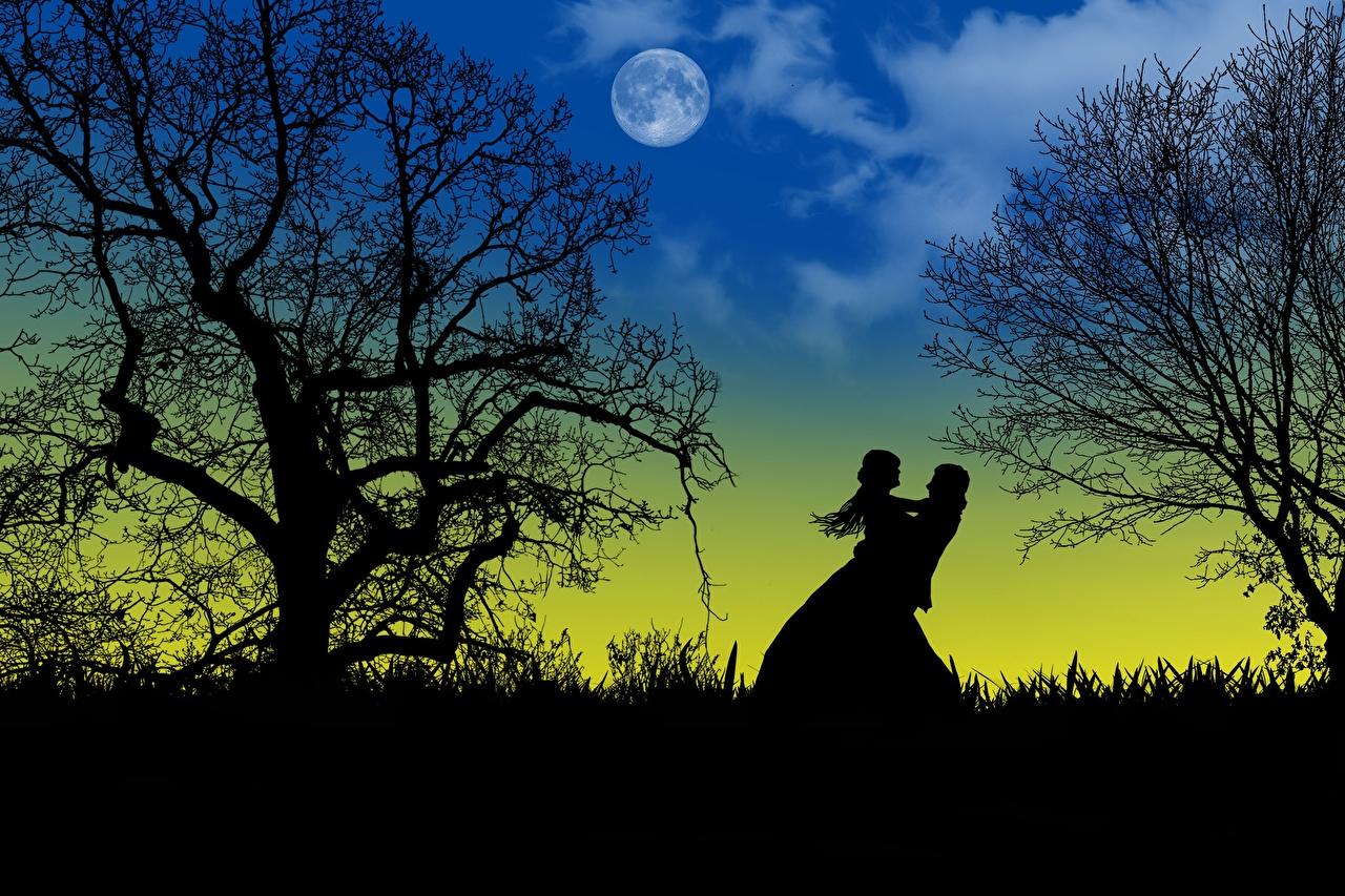 壁紙 愛 夜 月 木 シルエット 2 二つ デート ダウンロード 写真