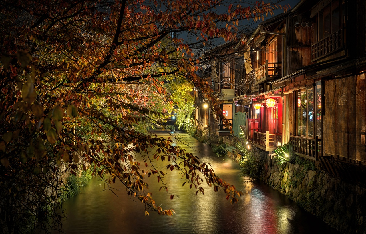 Images Kyoto Japan Canal Night Branches Cities night time