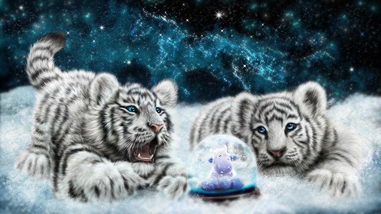 Fotos Tiger Große Katze Jungtiere 2 Weiß Tiere Gezeichnet babys Zwei ein Tier