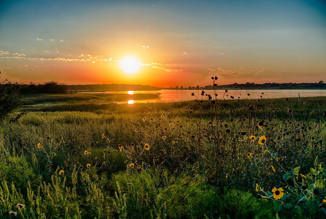Fotos von Texas Vereinigte Staaten Natur See Sonnenaufgänge und Sonnenuntergänge Gras USA