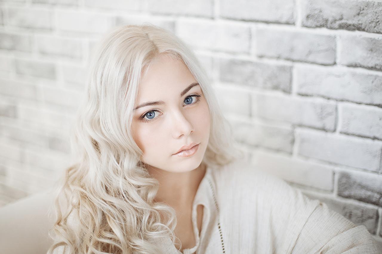 Foto Blond Mädchen Gesicht Mädchens Mauer Starren Blondine Blick