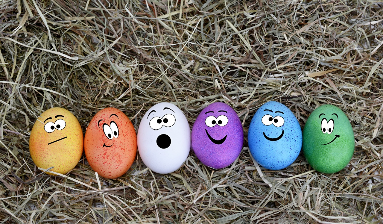 Photos Easter Smilies Funny Multicolor egg Straw Eggs