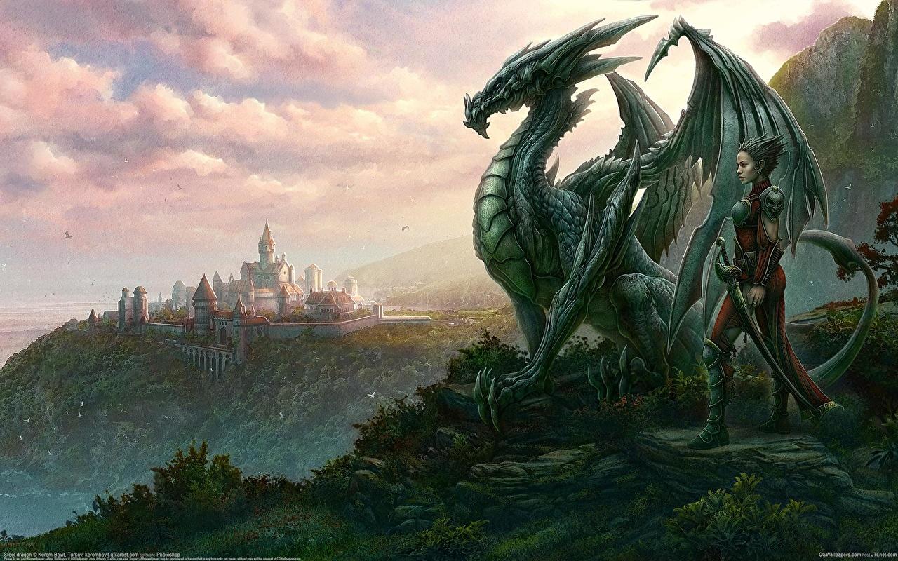 Photo Dragons Kerem Beyit Fantasy dragon